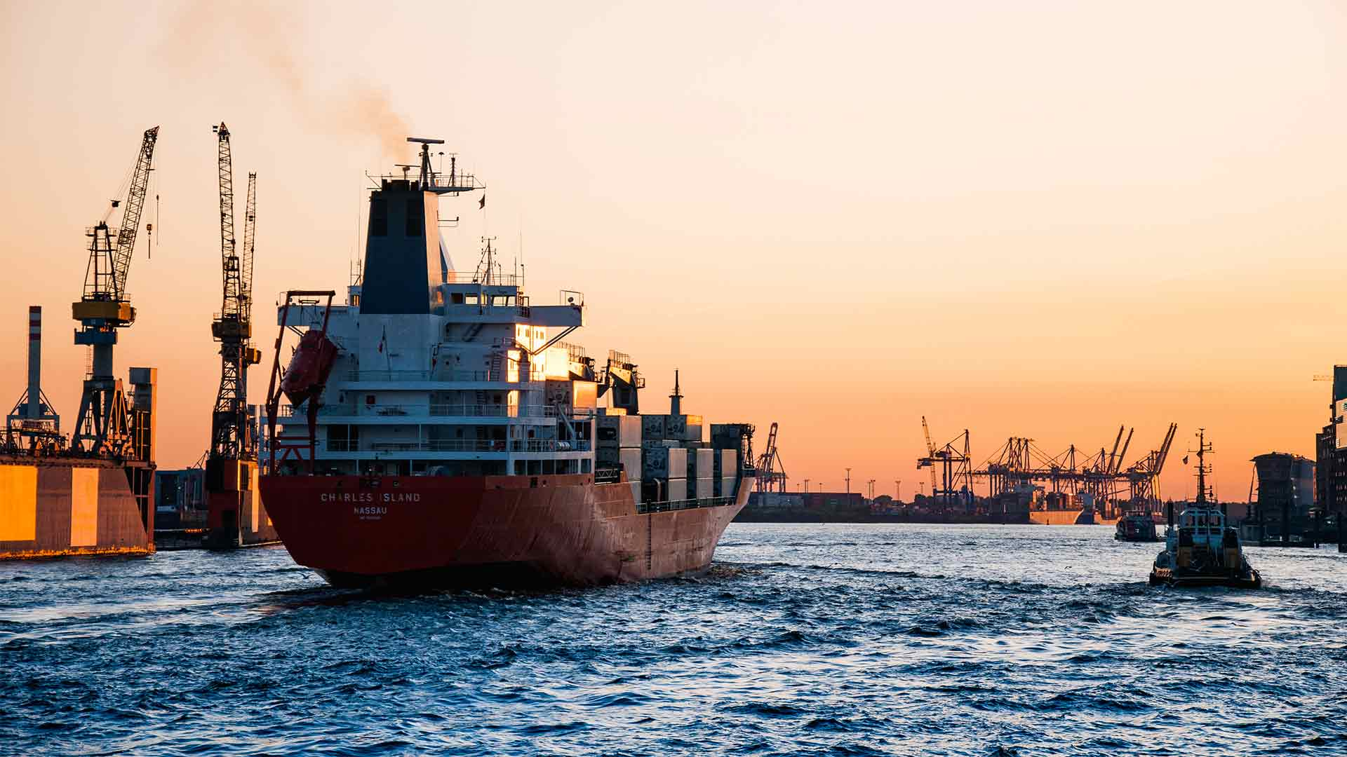 Decoding IMO 2020: Key Terms & Definitions